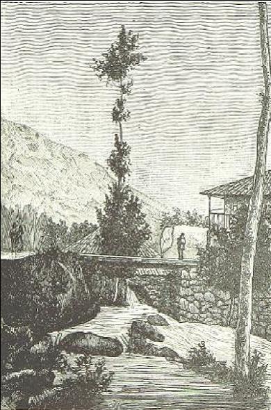 Dibujo publicado en 1886 representando el puente de Ponte Barxas/ O Minho Pittoresco